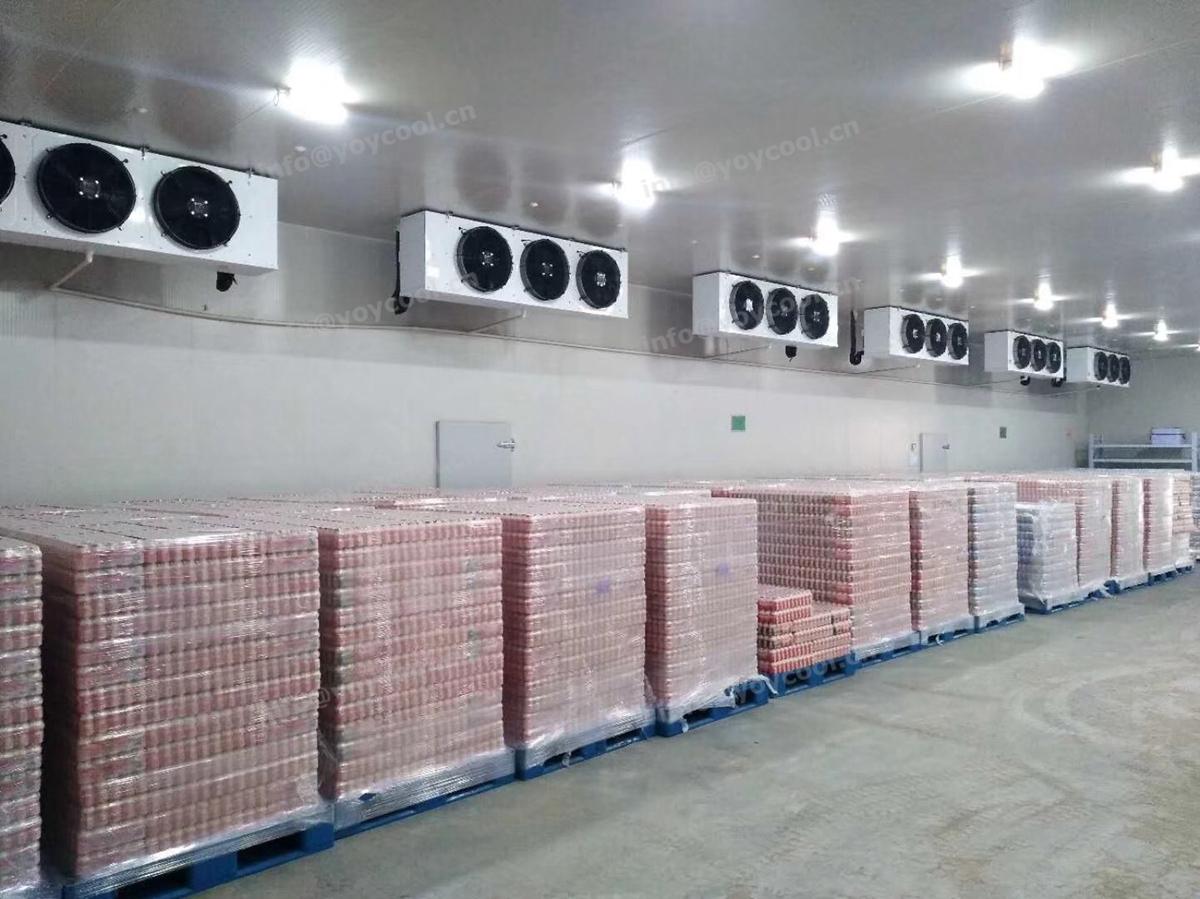 New Zealand milk cold storage room - www.yoycool.cn(12)